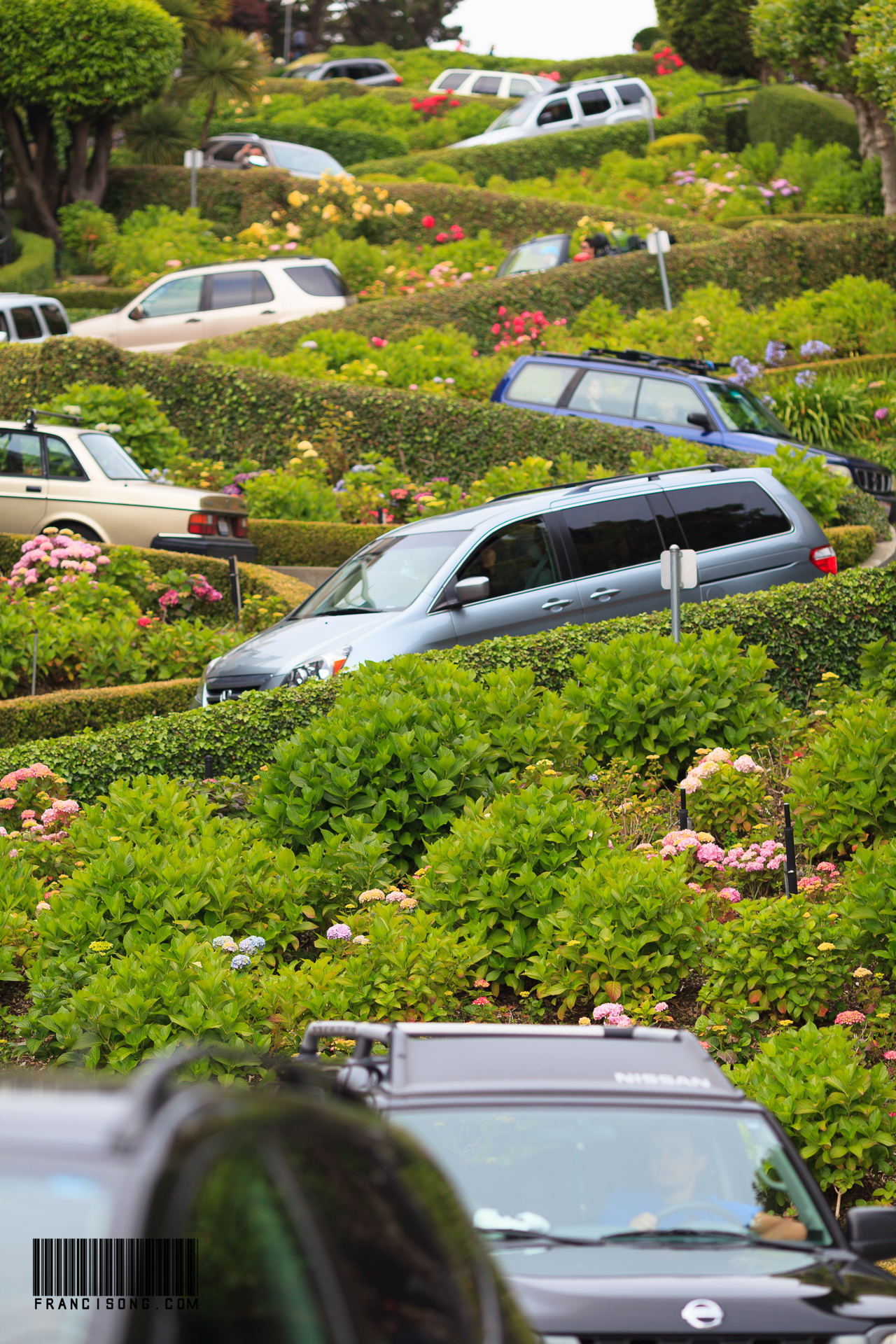 Busy at Lombard Street @ San Francisco