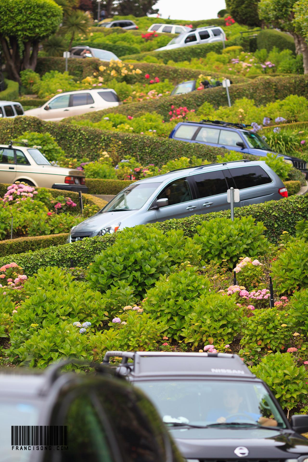 Busy at Lombard Street @ San Francisco